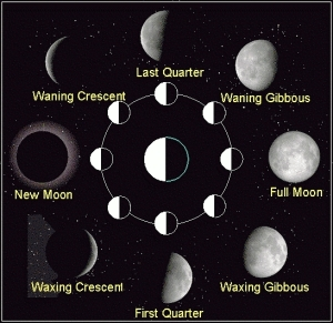 The phases of the Moon determine its malefic of benefic effect in astrology.